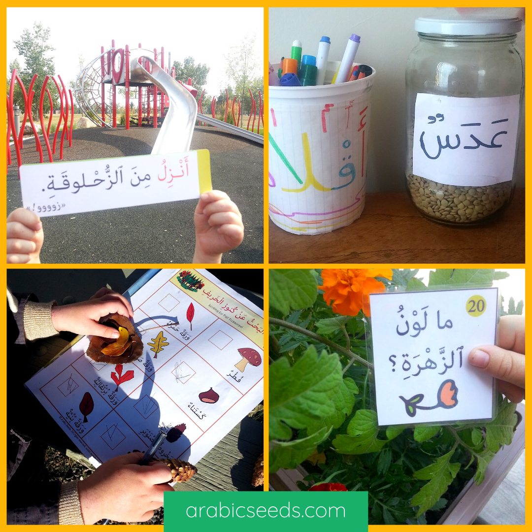 Arabic Seeds learning and practicing Arabic in daily life